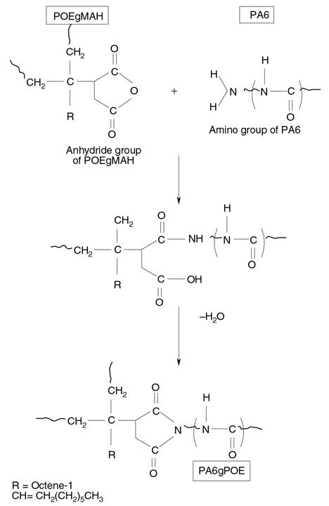واکنش شیمیایی بین PA6 و POEgMAH