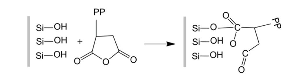 واکنش شیمیایی بین PP-g-MA و SGF