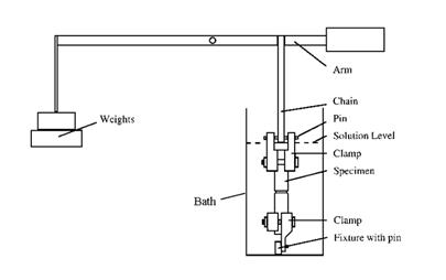 آزمون FNCT در اندازه گیری ESCR
