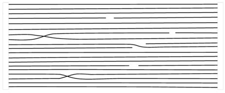 شماتیکی از آرایش یافتگی بالای مولکولی در یک لیف ژل ریسی شده